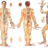 Успехи акупунктуры в лечении болезни Паркинсона
